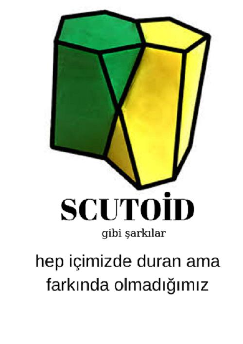 Scutoid